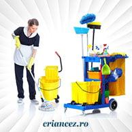 Sisteme curățenie