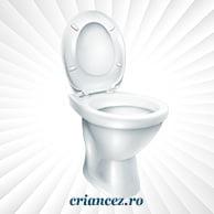 WC și pișoar